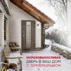 Стальная дверь с терморазрывом Сибирь (Nord Siberia)
